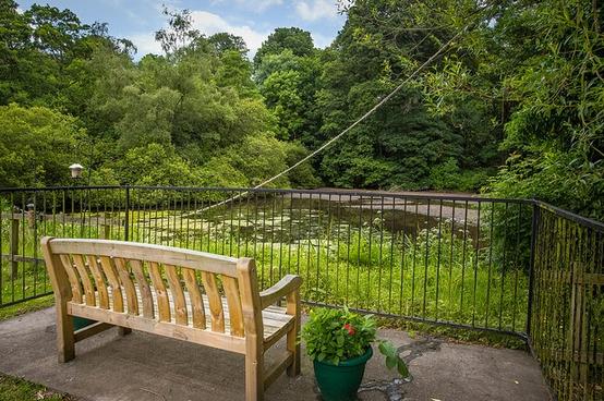 Goldielea care home garden