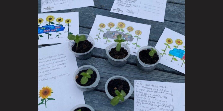 Elderslie's Garden Project Given Boost By Primary School Flower Donation